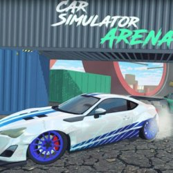 Автосимулятор Арена (Car Simulator Arena)